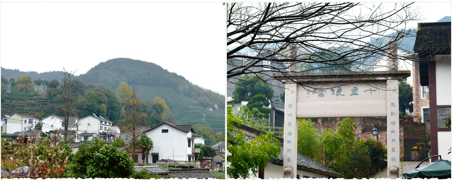 Views in Longjing Village